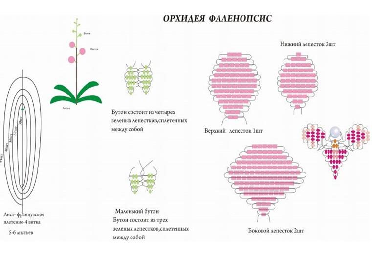 Цветы из бисера  схемы